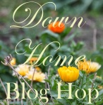 downhome+blog+hop
